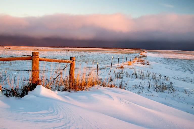 ND Winter-2