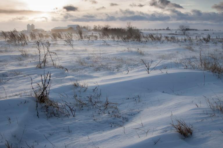 ND Winter-3-7975