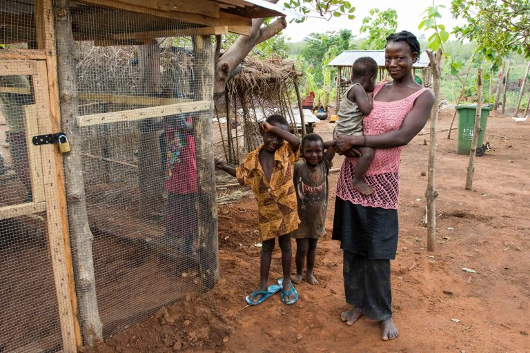 Ghana-Farms-0578