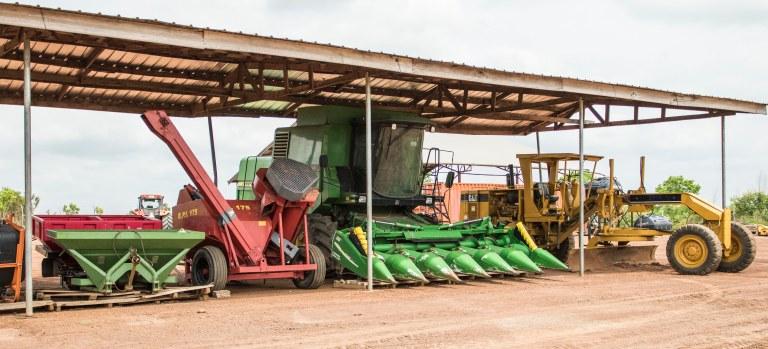Ghana-Farms-0783