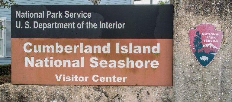 Cumberland Island-5299