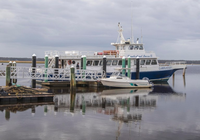 Cumberland Island-5307