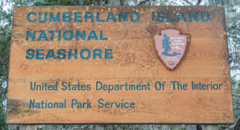 Cumberland Island-5319