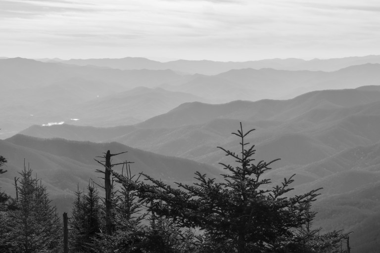 Great Smoky Mtns-5257