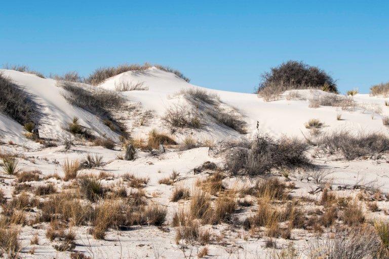 White Sands NM-2454