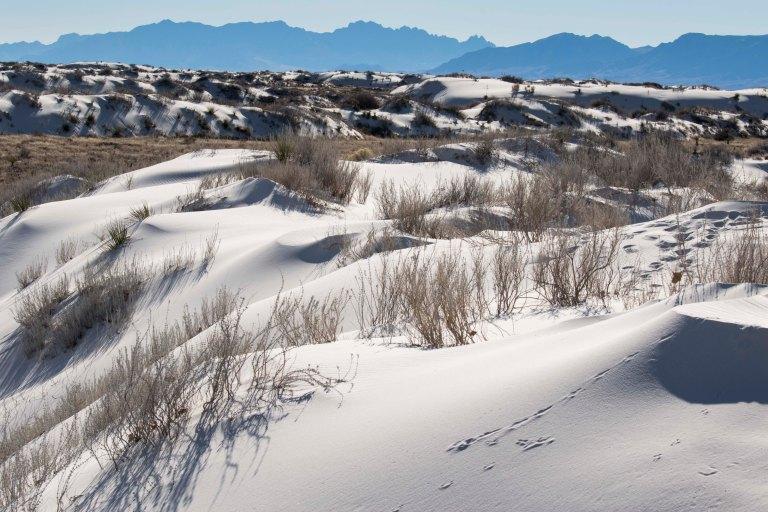 White Sands NM-2460