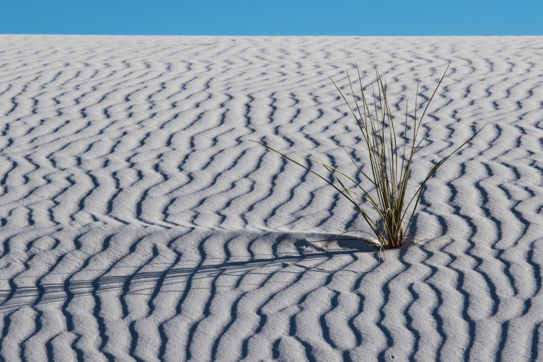 White Sands NM-2467
