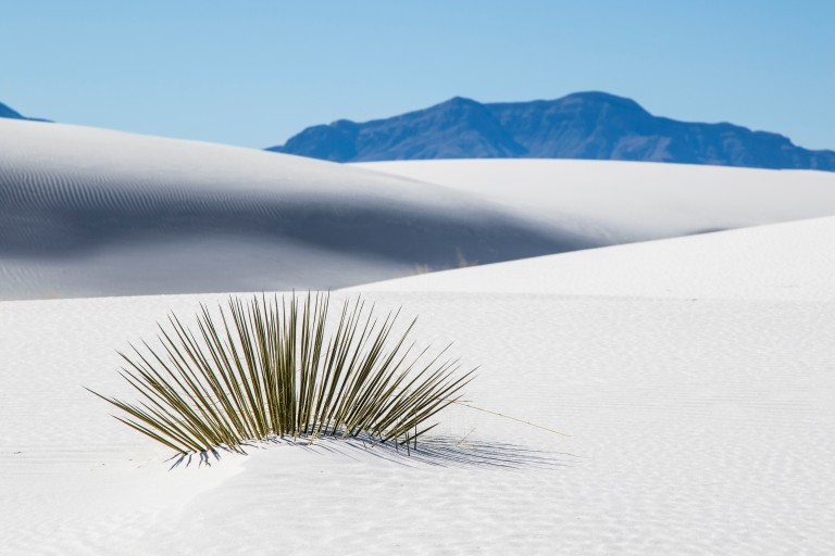 White Sands NM-5969