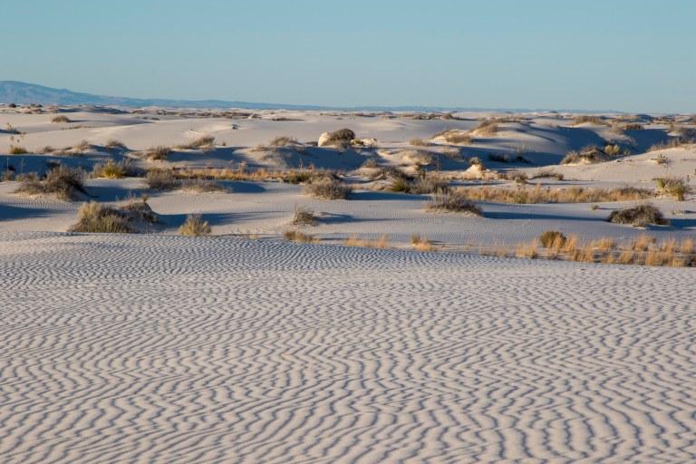 White Sands NM-6004