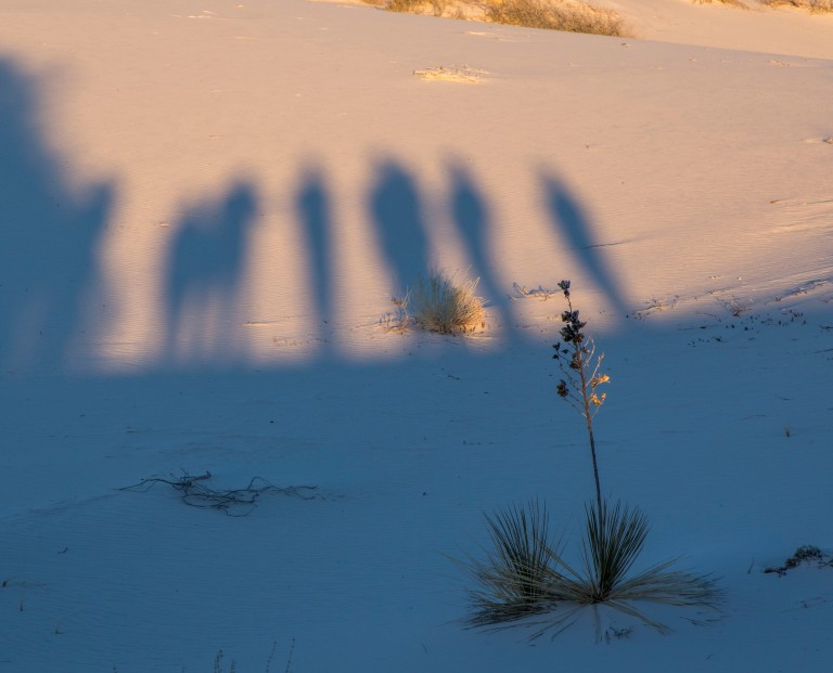 White Sands NM-6008