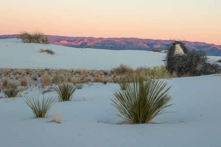 White Sands NM-6019