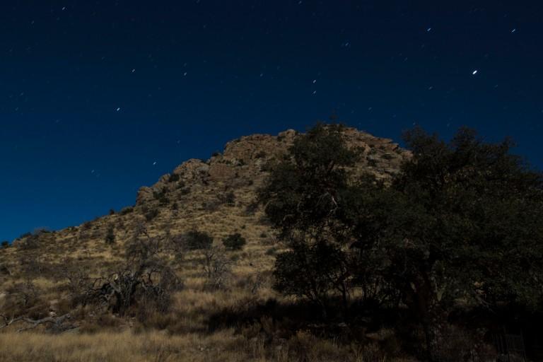 Chiricahua NM-6197