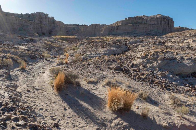 Around Taos Part 2-3509