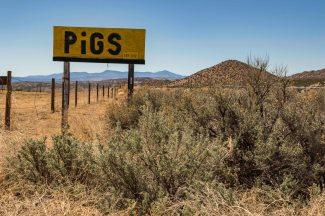 Around Taos Part 2-7655