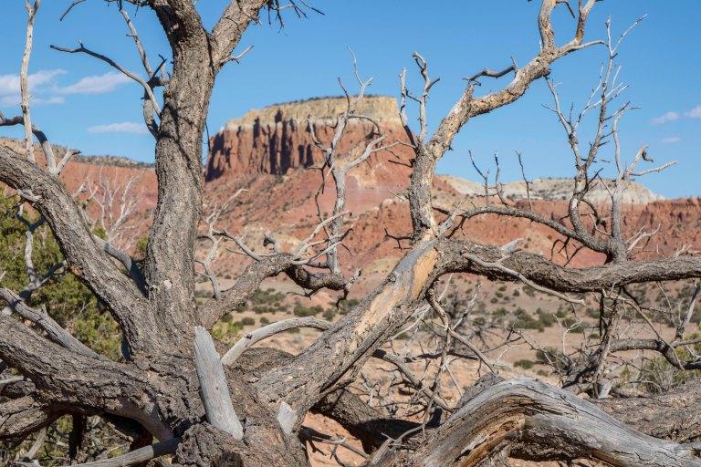 Around Taos Part 2-7729
