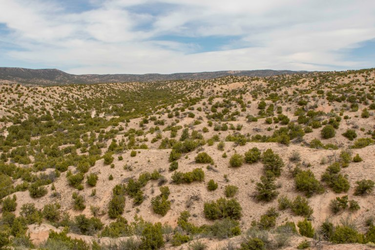 High Road to Taos - Part 2-8004