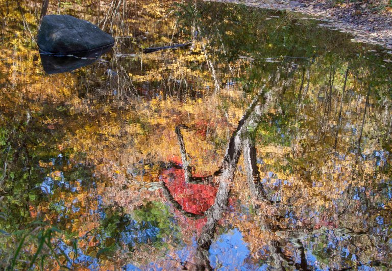 Fall -2005