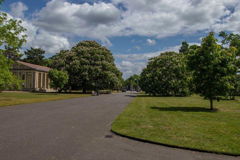 Kew Gardens-9539