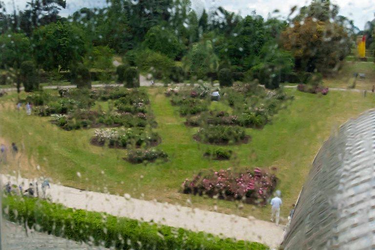 Kew Gardens-9569