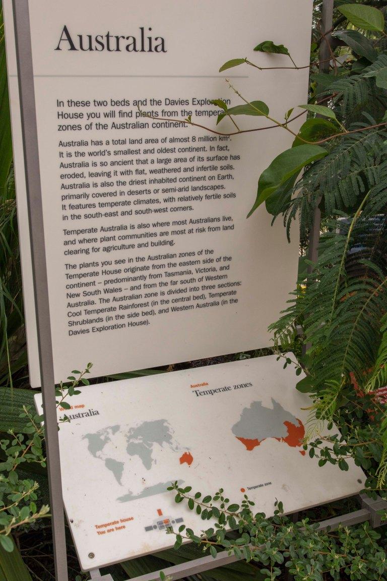 Kew Gardens-9622