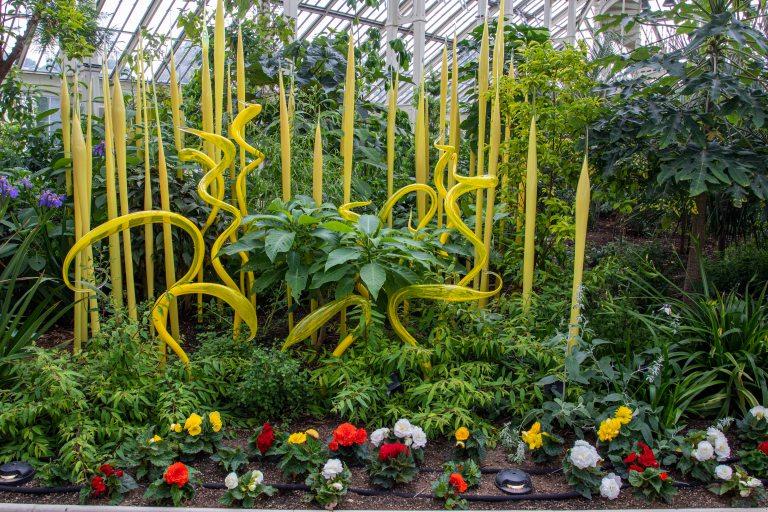 Kew Gardens-9628
