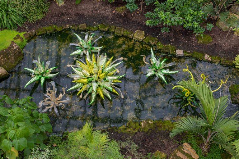 Kew Gardens-9637