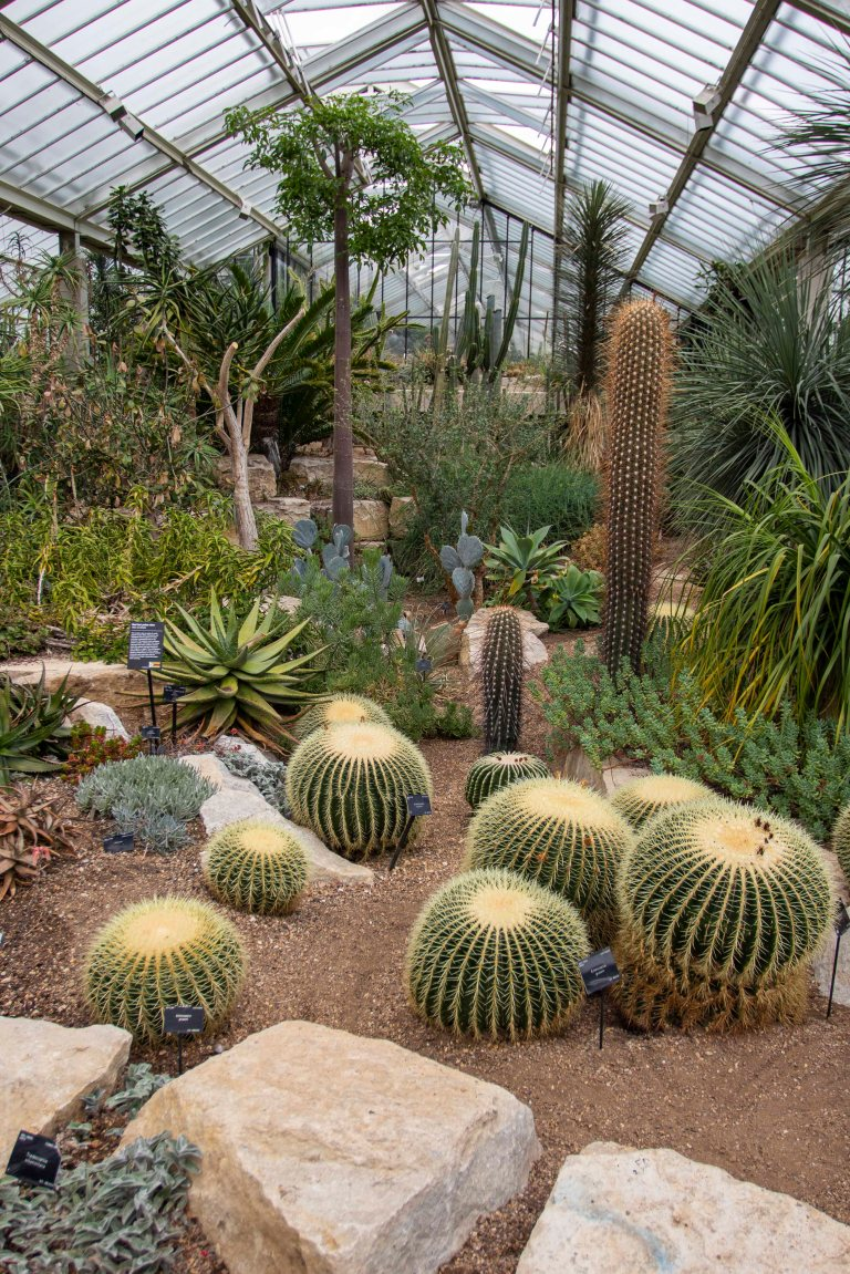 Kew Gardens-9732