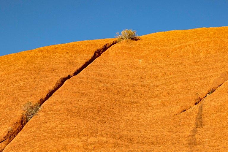 Uluru-5957